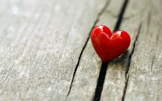 a-single-heart
